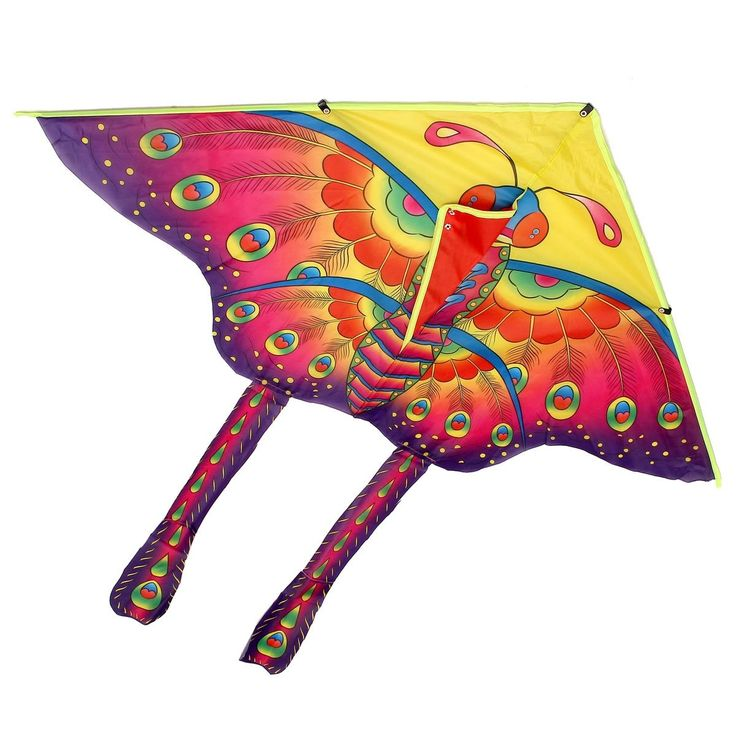 history of kites essay Free essays from bartleby | the kite runner the kite runner is a commentary on history, societal evils and human weaknesses it is not a story of heroes but.