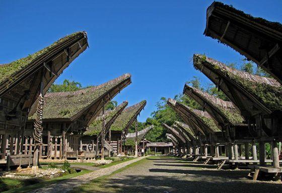 tana toraja indonesia Houses