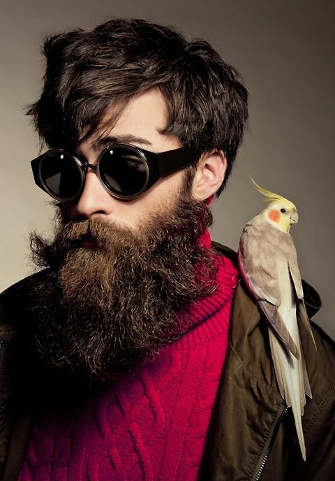 "Bird on a hipster. And the bird said, ""Put a beard on it."""
