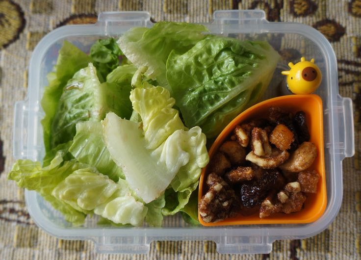 """Jack's class was having a lunch treat for a classmate's birthday so I'd have a break from bento-boxing today--or so I thought. Five mins before we had to leave for school, he insisted I make him a snack anyway. He wanted a salad: """"They don't usually serve vegetables at those parties!"""" Jack's lunch, day 65: Romaine lettuce, homemade asian dressing, spiced pecans and cashews, dried cherries and apples"""