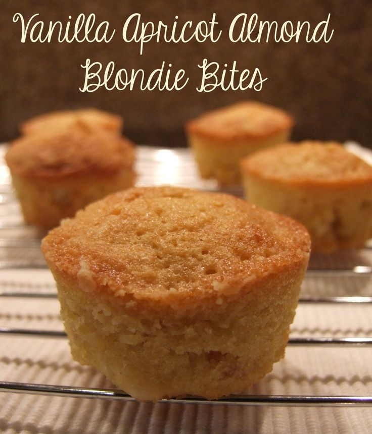 Perfect mouthfuls of deliciousness! These gorgeous blondie bites are moist, gooey, fragrant with vanilla & apricots, and studded with white chocolate chips.