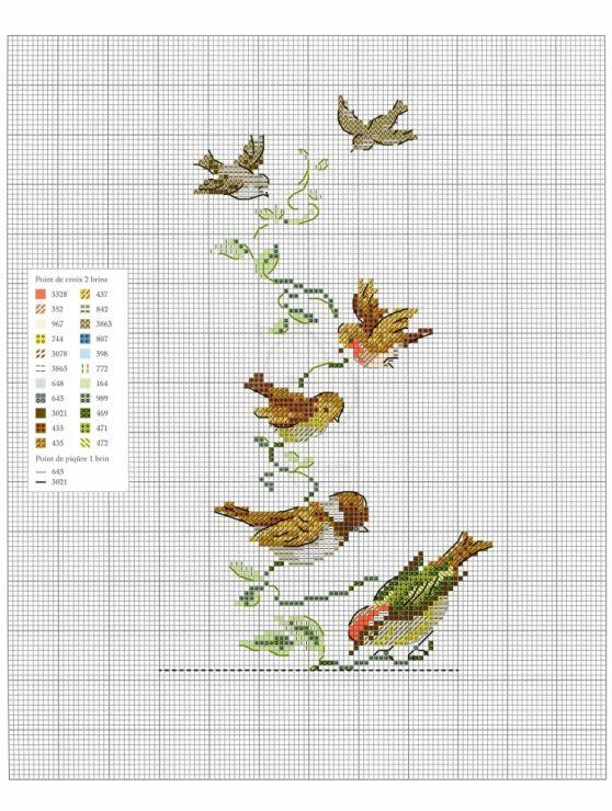 Gallery.ru / Фото #54 - Oiseauz, papillons et petites betes - Chispitas