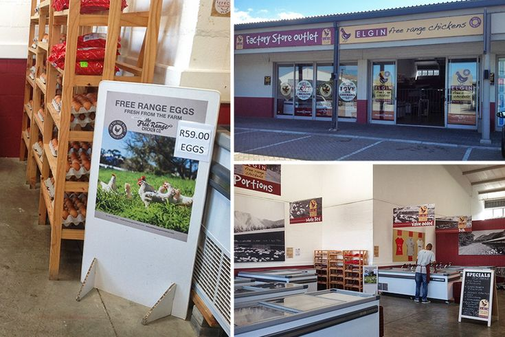 Elgin Free Range Chickens - Cape Town factory shops - Photos by Rachel Robinson