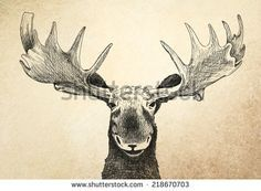 Angry Moose Tattoo moose head graphic - misc. pictures - mascots ...