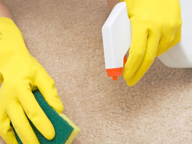 Carpet cleaning with vinegar and water
