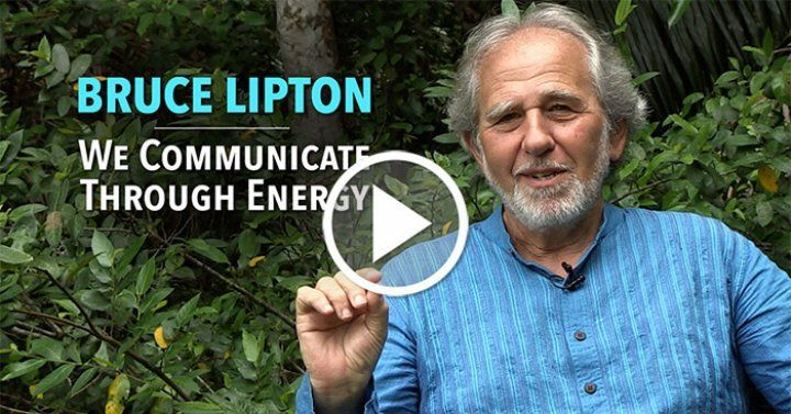 Cellular Biologist, Dr. Bruce Lipton, reveals the connection between Quantum Theory and feelings.