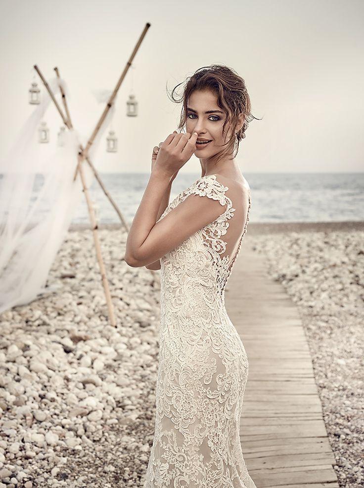 7 best Destination Wedding - Aruba images on Pinterest | Short ...
