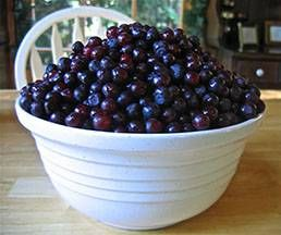 Wild Huckleberry Jam Recipe