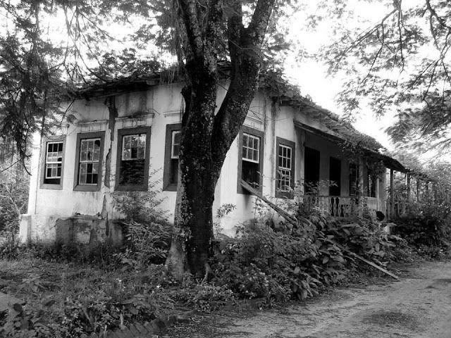 162 - Esta é a FAZENDA BOTAFOGO, localizada bem próximo da FAZENDA BELA ALIANÇA, no caminho que leva de PINHEIRAL a VARGEM ALEGRE.  Originalmente, as duas fazendas, assim como outras, tinham os mesmos proprietários: COMENDADOR SILVINO JOSÉ DA COSTA e ANNA CLARA BREVES DE MORAES COSTA.   A metade da casa sede já desabou, o que restou está em ruínas. FONTE: FACEBOOK FAZENDAS ANTIGAS.