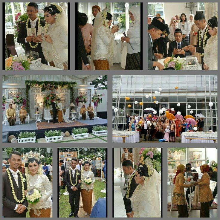 Wedding Ayu