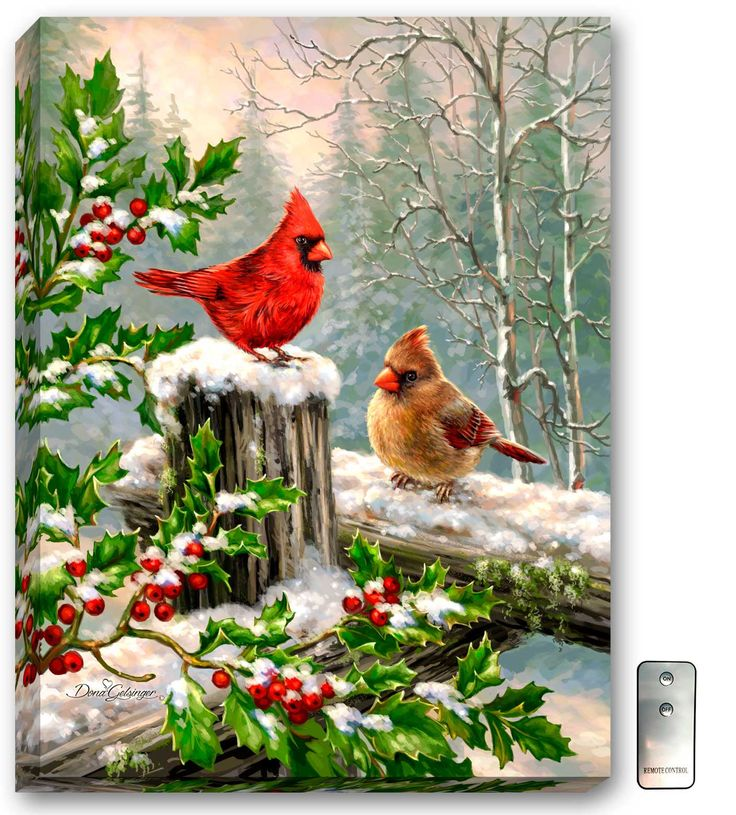 Winter Visitors - Illuminated Fine Art