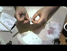 Чудесные игрушки Анастасии Голеневой. МК Жабка