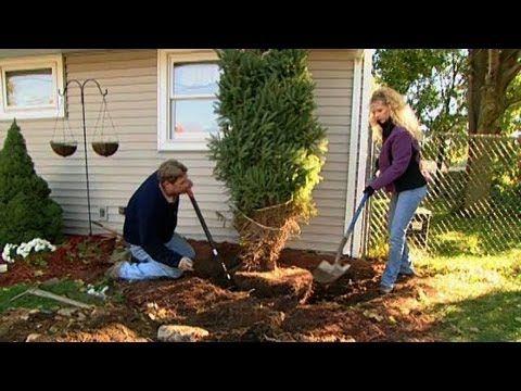 Tree Transplant, Handrail Extension | Episode 18, Season 4 (2007)