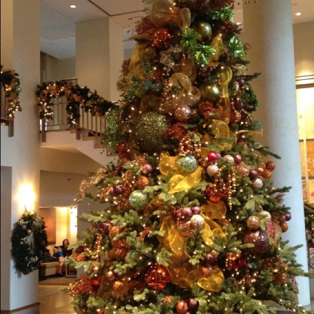 9983 best Christmas trees images on Pinterest  Christmas trees
