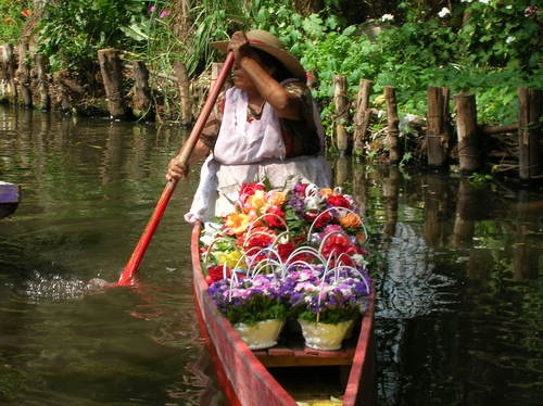 vendedora de flores en Xochimilco I wanna go home from the beach like this