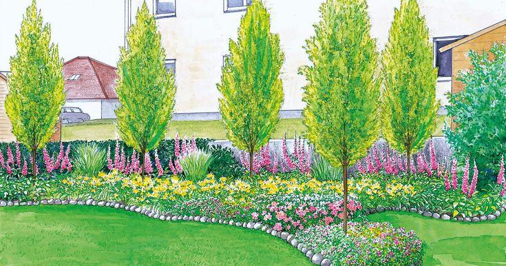 13 best Staudenbeete images on Pinterest Flower beds, Plants and