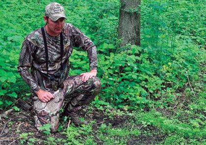 You don't need to own 500 acres or earn a degree in horticulture to capitalize on the food plot craze.