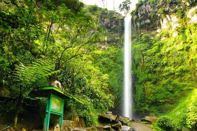 Air terjun Coban Rondo teletak di Kab. Malan tepatnya di Kec.Pujon, disini anda bisa menikmati indahnya air terjun sekaligus bisa menikmati wisata edukasi