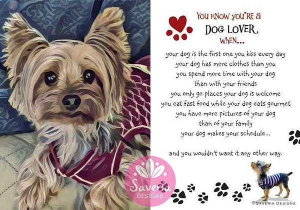 You Know You Re A Dog Lover When Yorkie Print Postcard Set 5x7 Yorkie Print Of Artwork By Saveria Torquato On Dog Lover Quotes Dog Lovers Art Dog Lovers