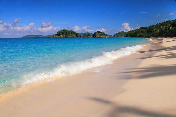 Trunk bay Virgin Islands