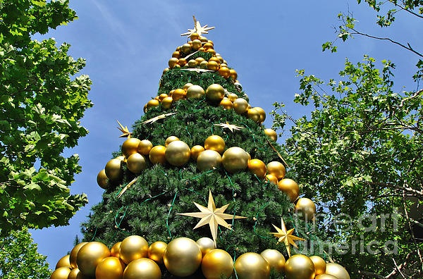 #SUMMERTIME #CHRISTMAS - #Christmas #Tree    #Prints & #Cards available at:  http://kaye-menner.artistwebsites.com/featured/summertime-christmas-kaye-menner.html  -