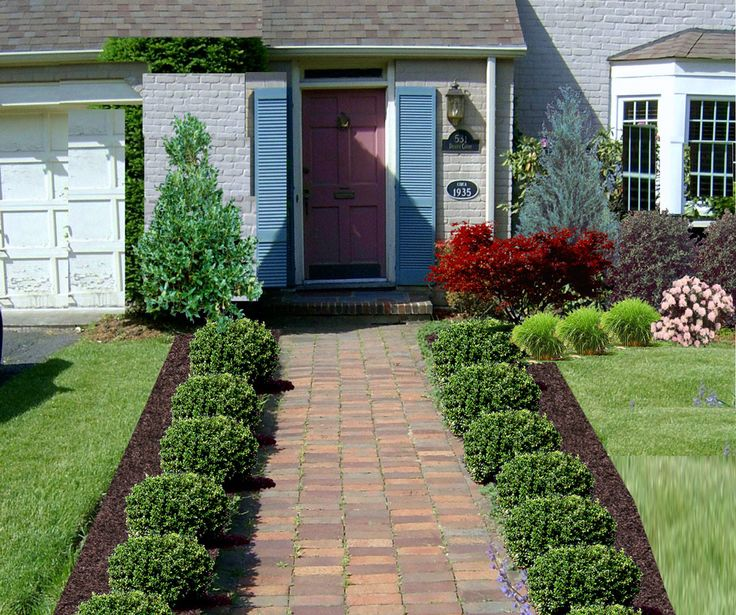lush grass and shrubs plus red tree for front yard landscape idea feat straight walkway with greenery on both sides