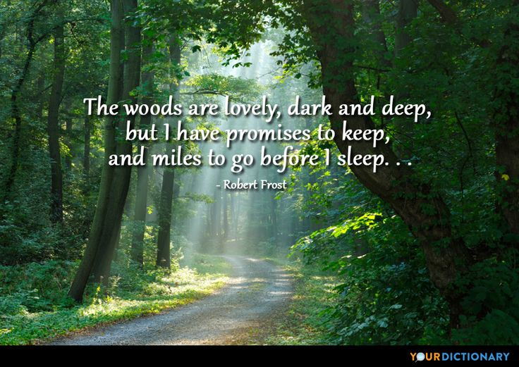 Best 25+ Forest Quotes Ideas On Pinterest