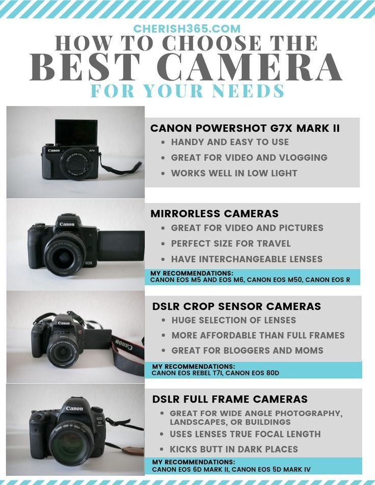 Which camera is best for you? The choices are overwhelming