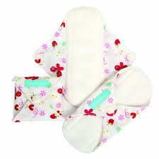 Enter to win: 23 Days of Christmas - Day 4 - Charlie Banana reusable Menstrual Pads | http://www.dango.co.nz/s.php?u=spPKDCr42877