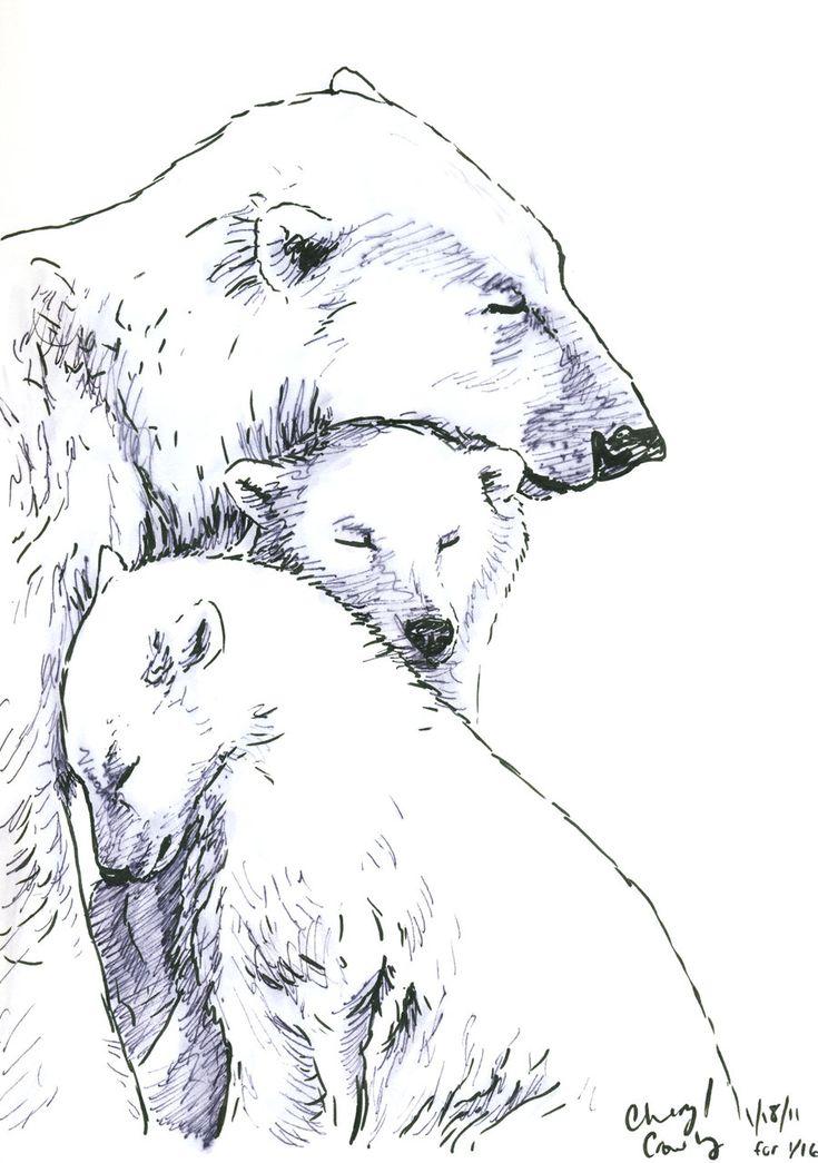 Polar Bear Sketch   Beautiful Scenery Photography