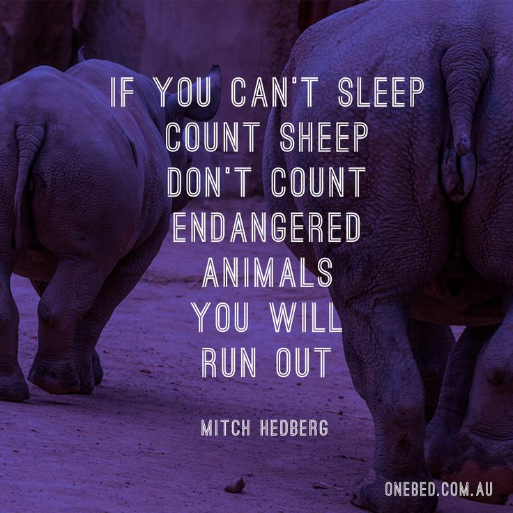 Mitch Hedberg on trying to sleep (stand up comics always give the best sleep-related advice) #sleep #Hedberg #comedy #legend #standup #standupcomic