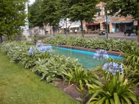 Fiori&Giardini