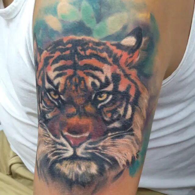 Tigre coverup