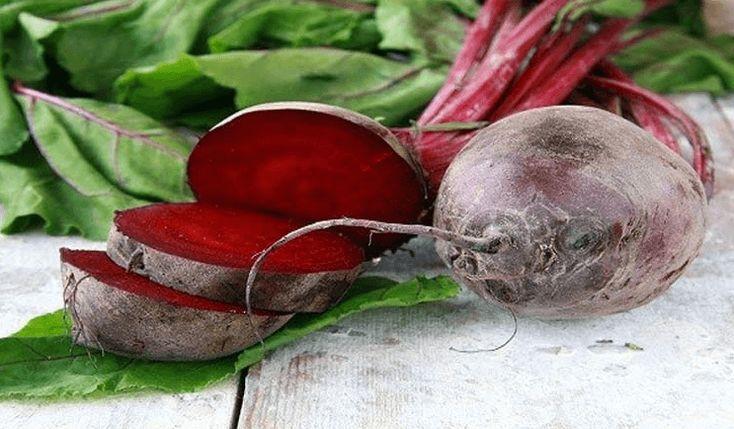 Tengo 60 años y esta planta devolvió mi visión, eliminó grasa de mi hígado y limpió completamente mi colón. - Buen Dia Salud