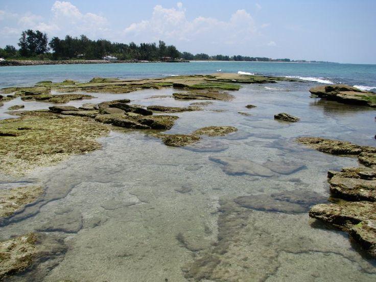 31 Best Siesta Key Fl Images On Pinterest Sarasota Florida