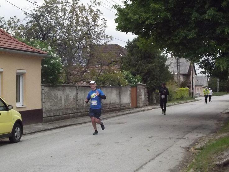 Szent György-heti Vigasságok 2016- III. Ezerjó Félmaraton Mór Geszler Családi Pincészet: fröccspontként vártuk a futókat immáron 3. éve.