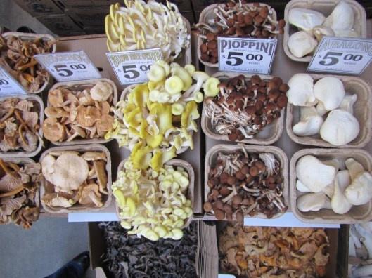 Far Out Fungi in the Ferry Building, San Francisco: Golden Gates, Years Parade, Ferris Building, Pretty Farmers, Farmers Marketing, Marketing Bouquets, San Francisco
