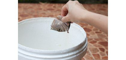 How to Make Fish Fertilizer | eHow