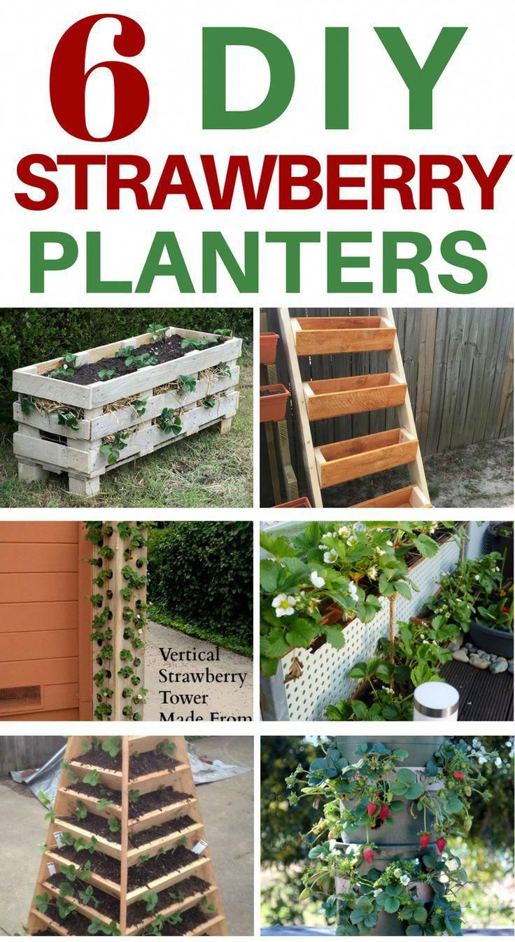 6 Diy Strawberry Planter Ideas These All Look Fairly Easy To Make Strawberry Planters Diy Strawberry Plants Ideas Growing Strawberries In Containers