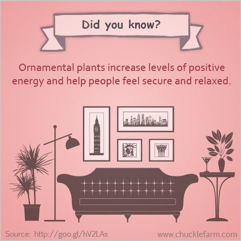 282 best Feng Shui Enhancements and remedies images on Pinterest ...