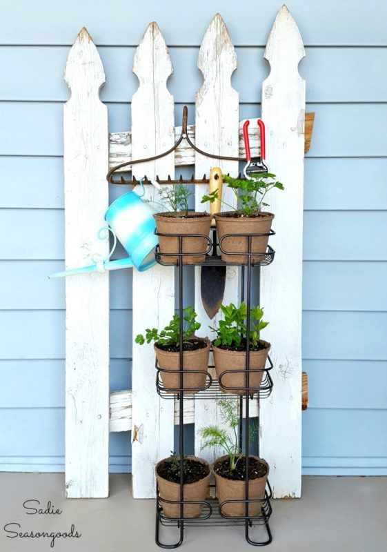 Friday Favorites: Backyard Ideas and More