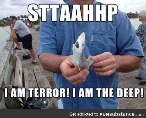 Caught a baby shark