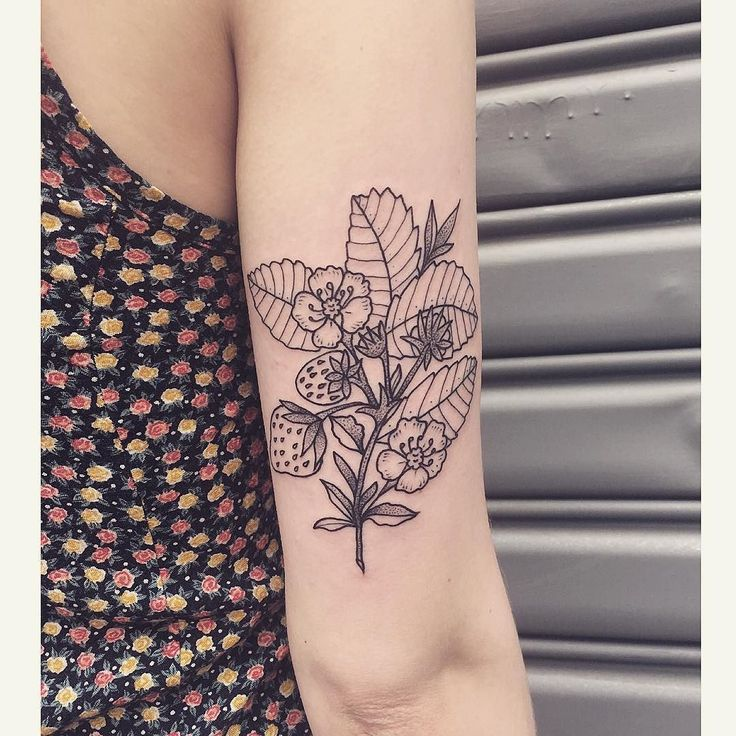 Strawberry plant for Rachel  done at @daredeviltattoo  to book an appointment…