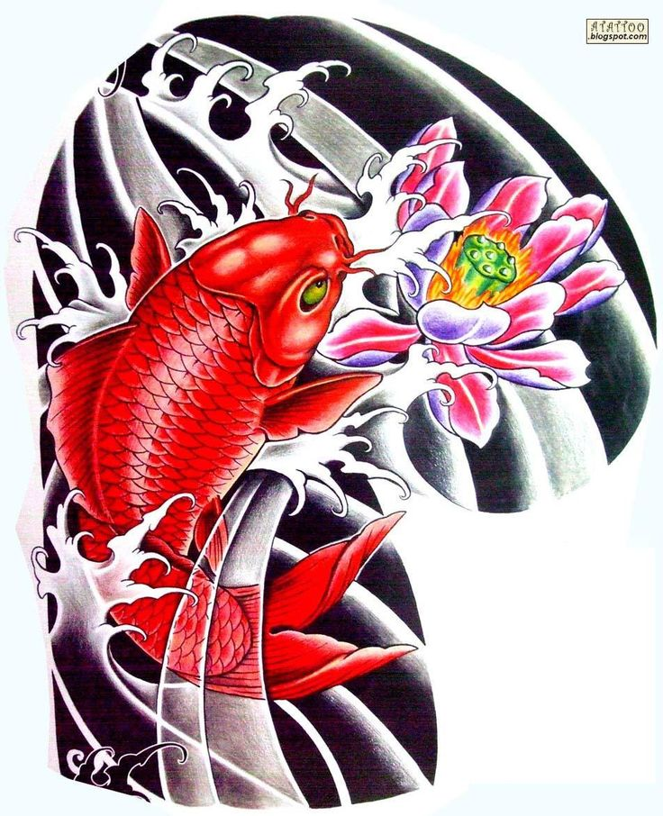 Muito apreciadas no Japão e na China, as carpas Koi, possuem além de sua beleza singular, um significado que as levou a ser um dos animais mais tatuados em todo o mundo. A Carpa se transforma em Dr…