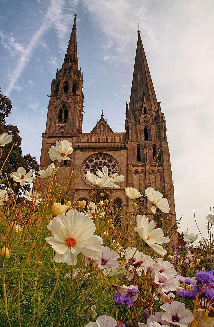 Découverte insolite de la cathédrale de Chartres http://www.tourisme.fr/paroles-office/37/visite-insolite-de-la-cathedrale-de-chartres.htm Crédit : Fr Antunes
