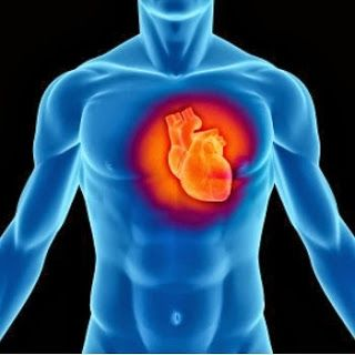 Miel y Canela Contra Las Enfermedades Cardiacas.    http://ow.ly/plRhv