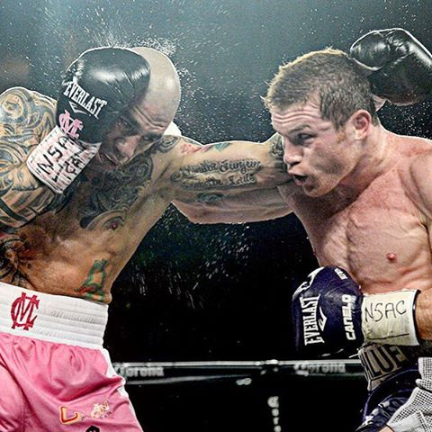 PHOTOS Canelo edges Cotto http://www.boxingnewsonline.net/photos-canelo-alvarez-edges-miguel-cotto/ #boxing #CottoCanelo PHOTOS Canelo Alvarez edges Miguel Cotto - Canelo Alvarez is now WBC...