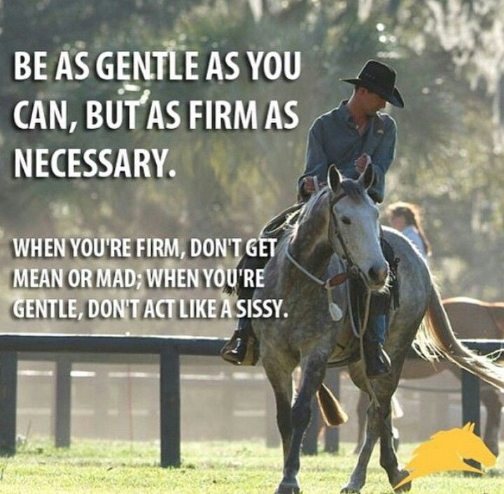 Good advice for riding and life!