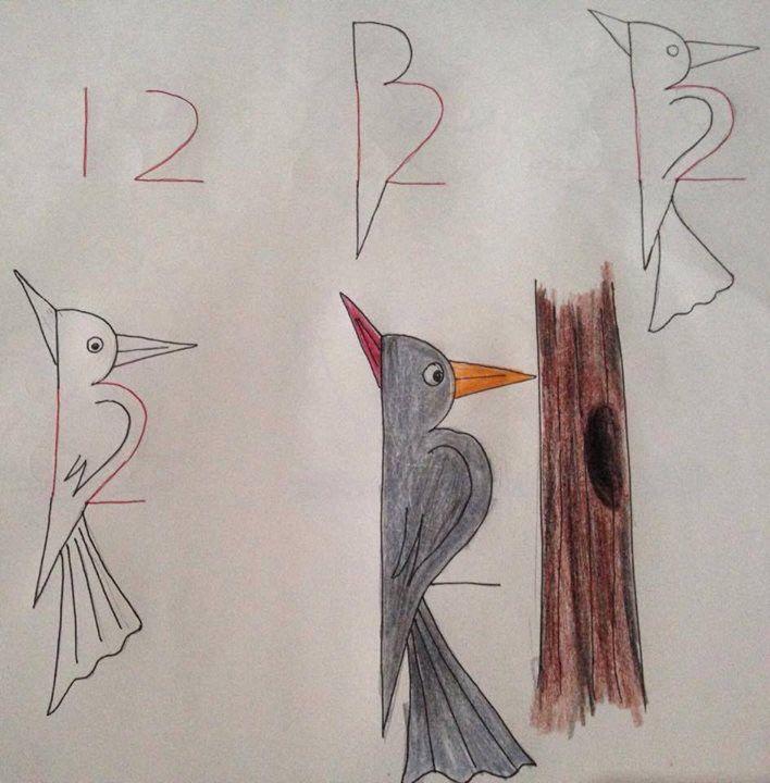 Tekenen met behulp van cijfers | een specht stap voor stap tekenen | basisschool | groep 3 | groep 4 | groep 5 | kinderen