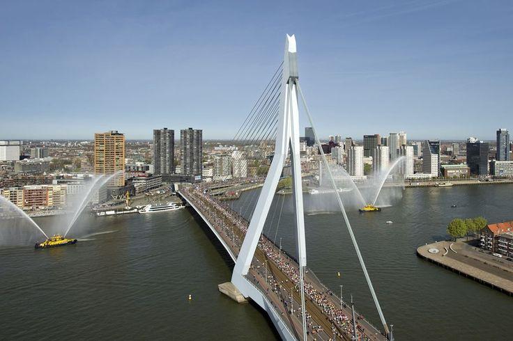 Fascinating | Rotterdam | The Netherlands